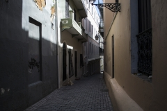 Alexis_Masino_UPenn_Tony_Ward_Old_San_Juan_Puerto_Rico_spring_break_vacation_photo_photography_island_streets_dog_alley_animal_stray_colors_buildings