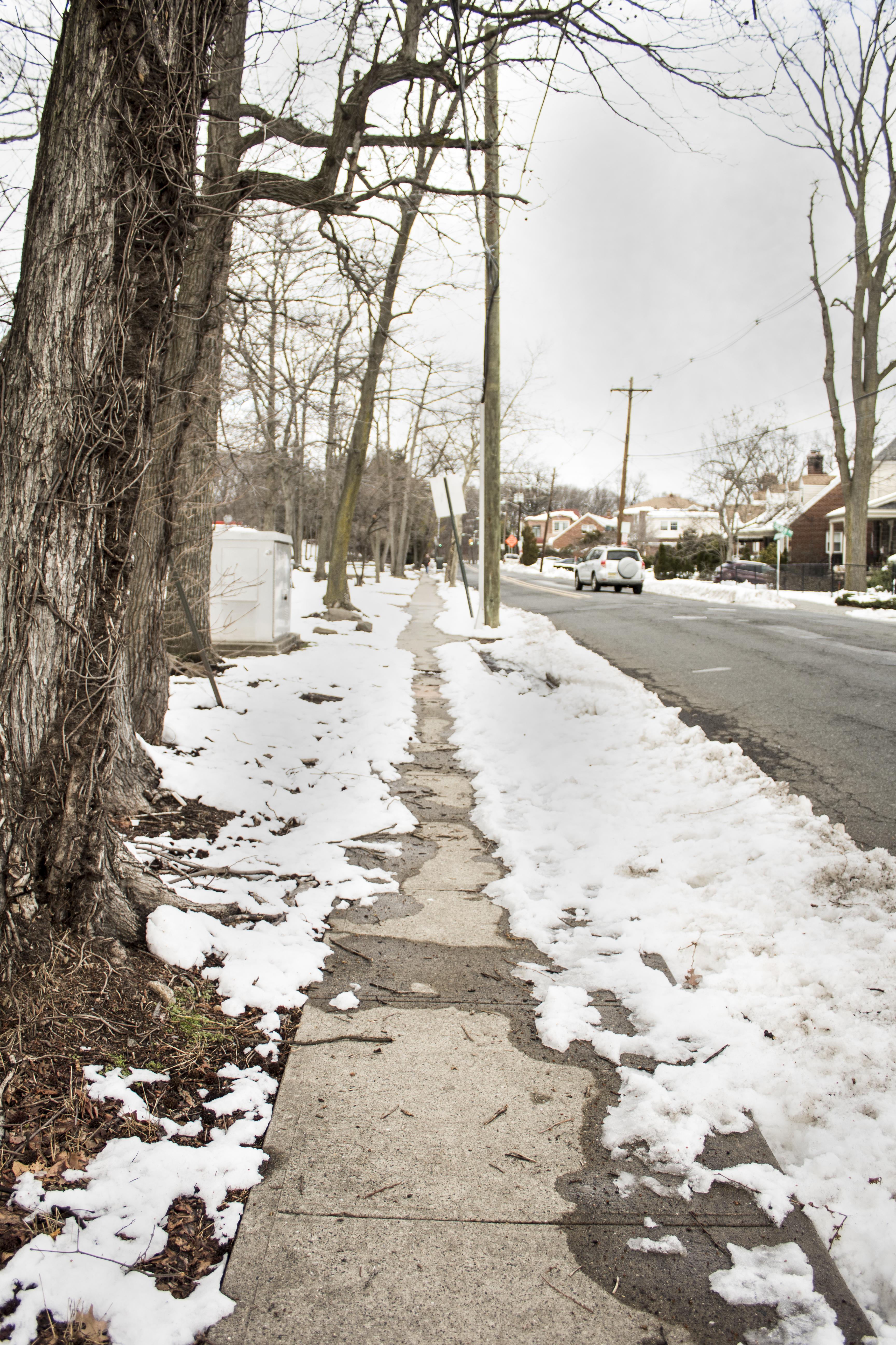 Eileen_Ko_Travel_Road_Snow_Path_Winter_Trees