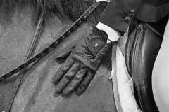 Esther_Fleischer_Still_Life_8_A_Job_Well_Done_Horse_Reins_Martingale_Glove_Arm_Saddle_Leg