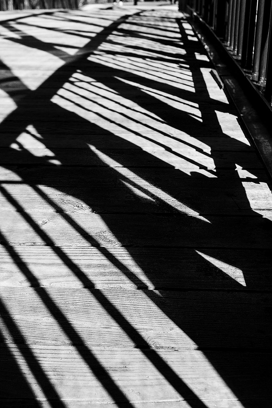 Janelle_Tong_Photography_Tony_Ward_Studio_Individual_Project_UPenn_Penn_Park_Bridges_Shadows_on_Wood_Black_and_White_2