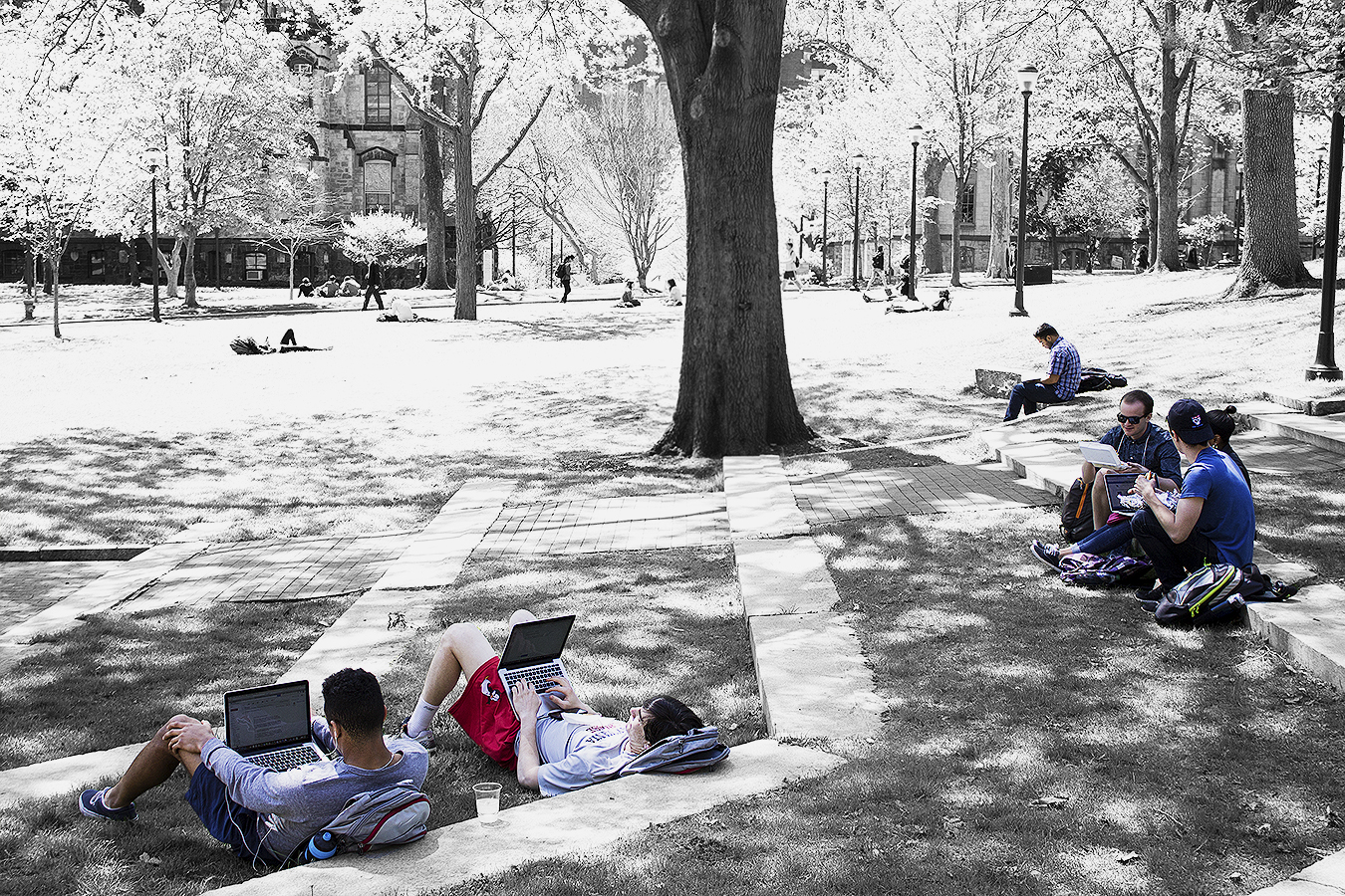 Janelle_Tong_Photography_Tony_Ward_Studio_Political_Project_UPenn_6_Student_Diversity_College_Green_Outdoors_Working_Shade