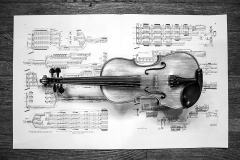 Janelle_Tong_Photography_Tony_Ward_Studio_Still_Life_UPenn_Houston_Hall_Violin_Traditional_Black_Angels_Music_Birdseye_View_Horizontal_Black_and_White_2