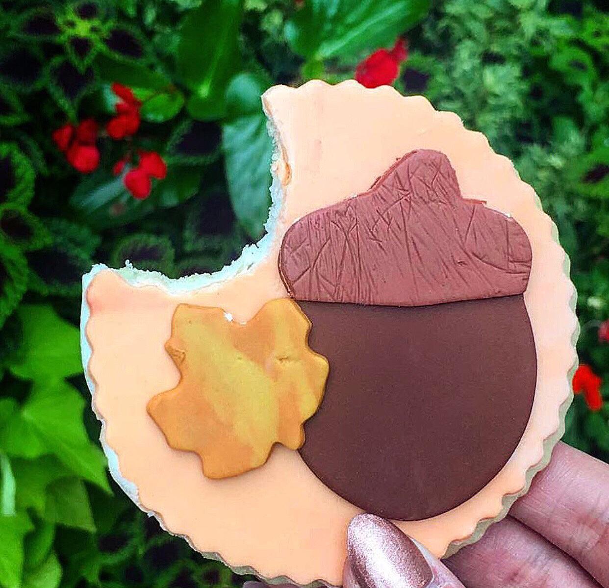 Tony_Ward_Studio_Katie_kerl_Fall_fun_guide_cookies