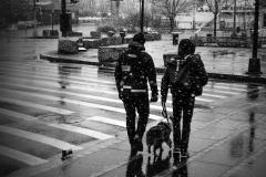 Noel_Zheng_photography_student_upenn_university_of_pennsylvania_Tony_Ward_Studio_New_York_City_travel_photography_black_and_white_snow_fall_brooklyn_bridge_architecture_dog_urban_life_though_my_looking_glass