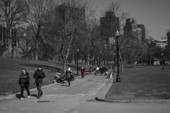 Rebecca_Huang_Boston_Boston_Commons_elderly_strolling_cold_red_scarf_afternoon_walk_selective_black_and_white_color