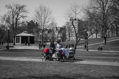 Rebecca_Huang_Boston_Boston_Commons_moms_and_babies_strollers_bench_babysitting_strolling_afternoon_sunny_cold_chatting_gesturing_selective_black_and_white_color