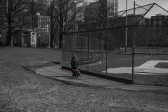 Rebecca_Huang_Boston_Boston_Commons_walking_dog_afternoon_sunny_baseball_field_fluffy_selective_black_and_white_color