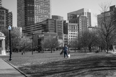 Rebecca_Huang_Boston_Boston_Commons_walking_dog_looking_at_phone_cold_sunny_afternoon_light_post_selective_black_and_white_color
