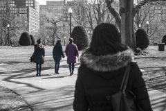 Rebecca_Huang_Boston_Boston_Public_Garden_strolling_afternoon_walking_dog_selective_black_and_white_color