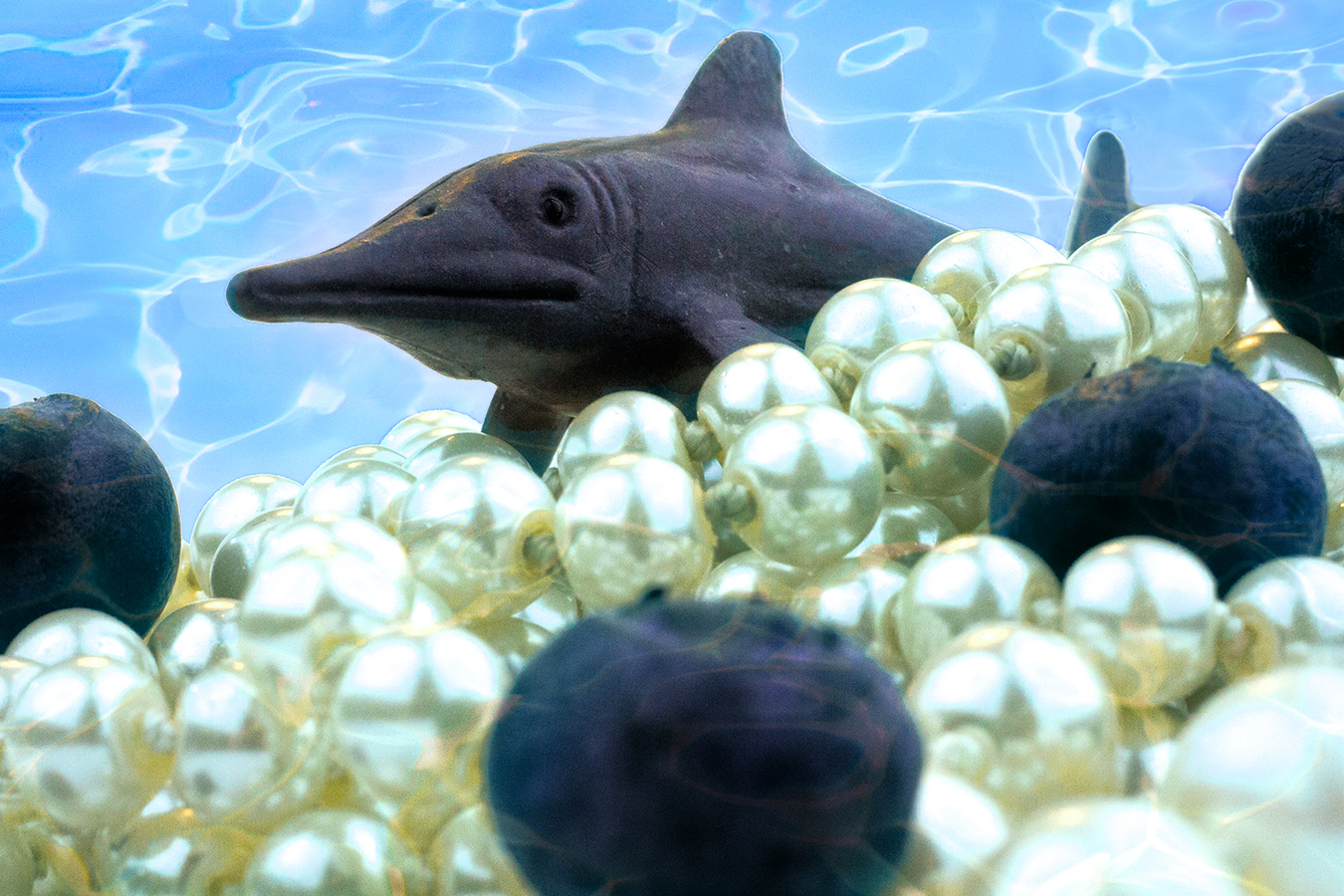 Victoria_Meng_Project2_Violet_Shark_Dinosaur_Pearls_Underwater_Blueberries_HDR
