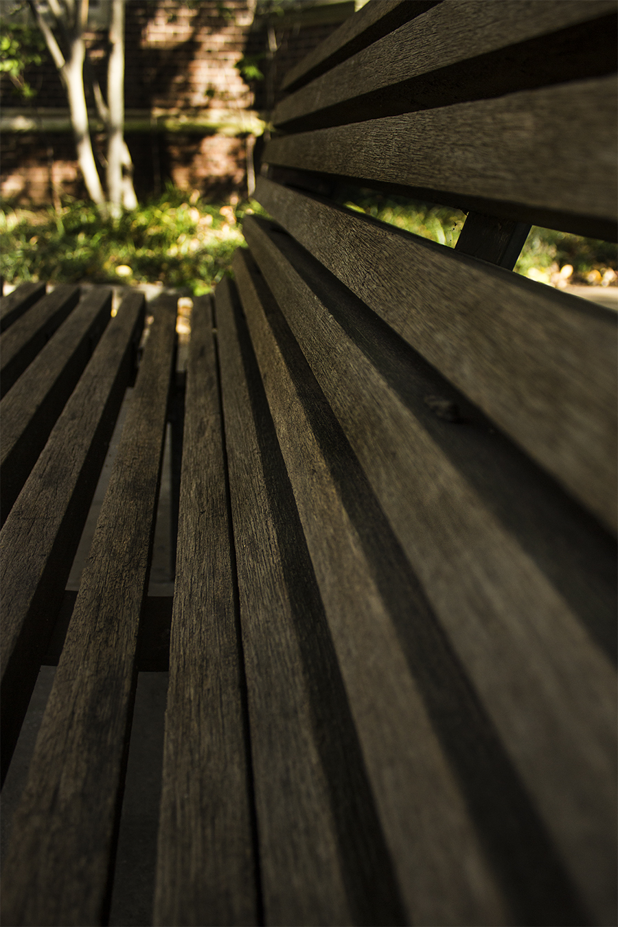 Yash Killa_StillLife_Philadelphia_Pattern_Repetition_Bench_Brown_Lines