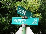 Tony_Ward_Studio_old_court_house_Radford_Virginia_Harvey_street_sign