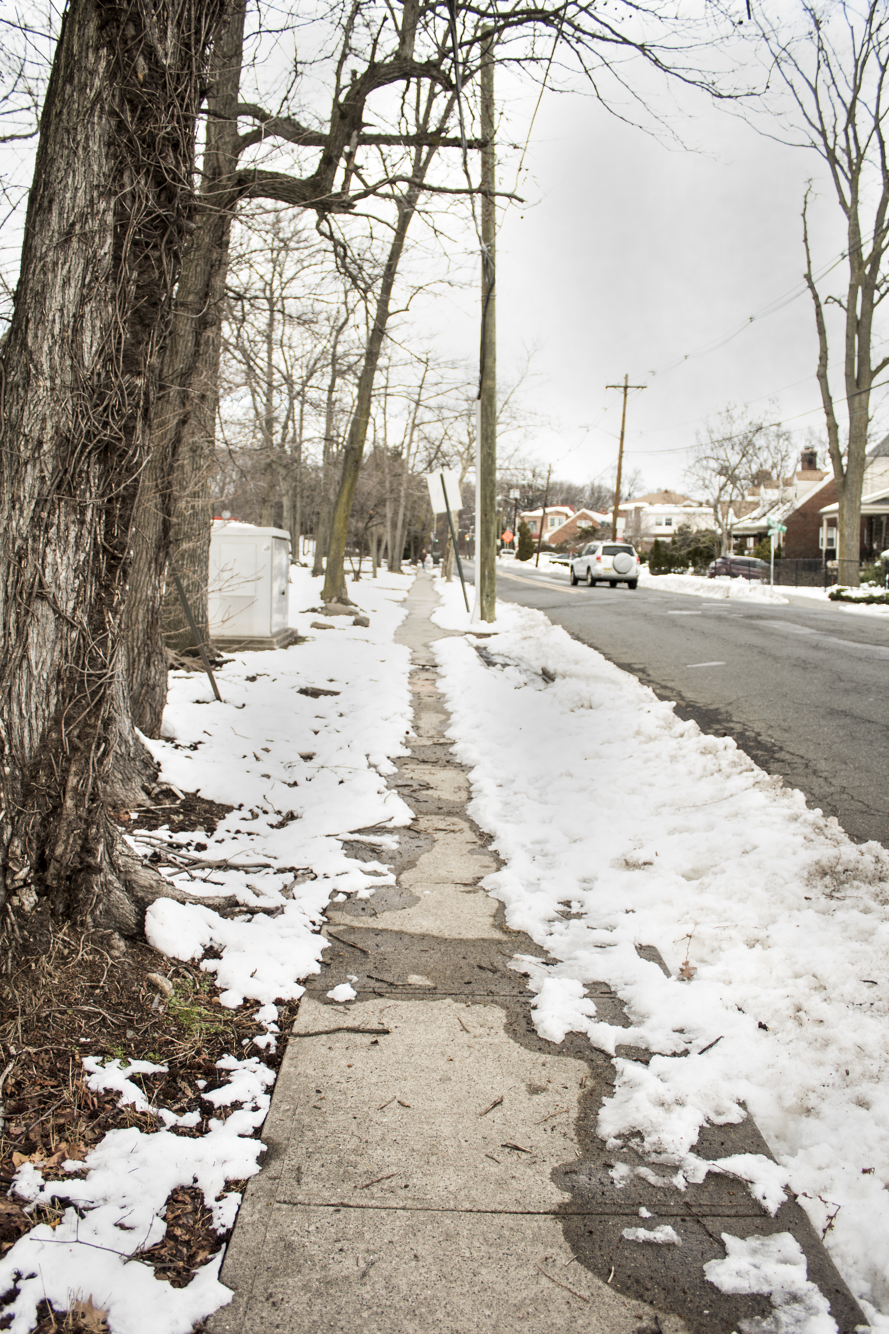 Eileen_Ko_Travel_Road_Snow_Path_Winter_Trees