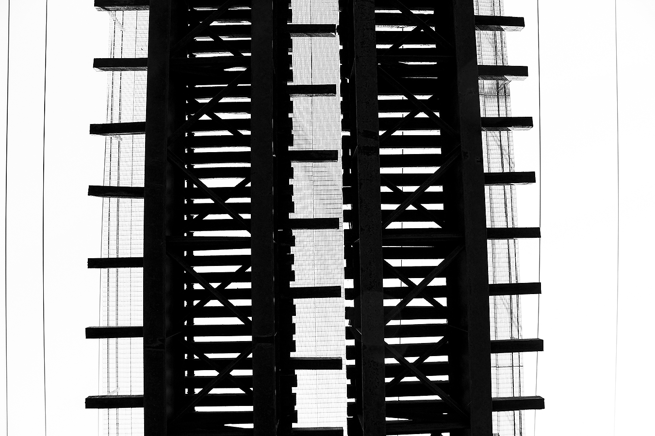 Janelle_Tong_Photography_Tony_Ward_Studio_Individual_Project_UPenn_Penn_Park_Bridges_Railroad_Tracks_Below_Two_Paths_Diverged_Black_and_White