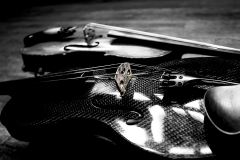 Janelle_Tong_Photography_Tony_Ward_Studio_Still_Life_UPenn_Houston_Hall_Violin_Traditional_Carbon_Fiber_Yin_Yang_Bridge_Closeup_Balanced_Black_and_White_3