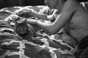 Jinghong_Cui_Erotic_Cat_1