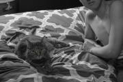 Jinghong_Cui_Erotic_Cat_4