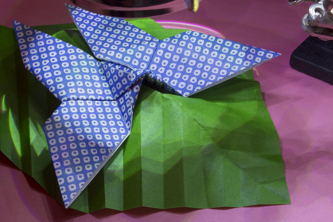 13_Leaf_Jonathan_Tang_UPenn_Tony_Ward_Studio_Long_Exposure_Low_Light_LED_Optics_Origami_Paper_Butterfly