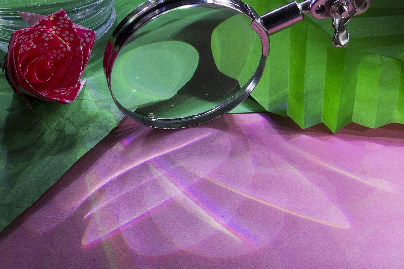 16_Flower_Jonathan_Tang_UPenn_Tony_Ward_Studio_Long_Exposure_Low_Light_LED_Optics_Origami_Paper_Rose_Leaf_Pink