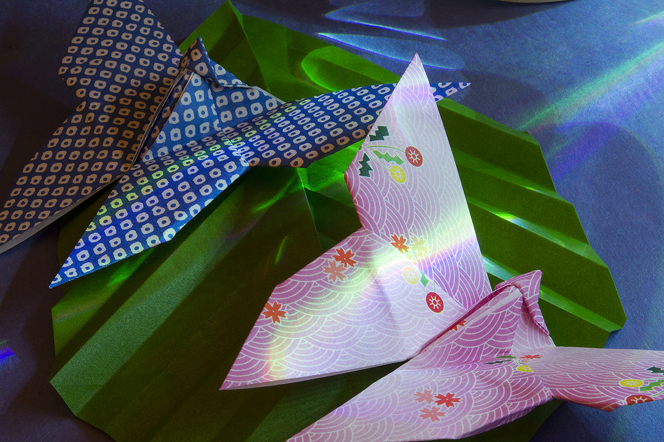 18_Butterflies_Jonathan_Tang_UPenn_Tony_Ward_Studio_Long_Exposure_Low_Light_LED_Optics_Origami_Paper_Leaf
