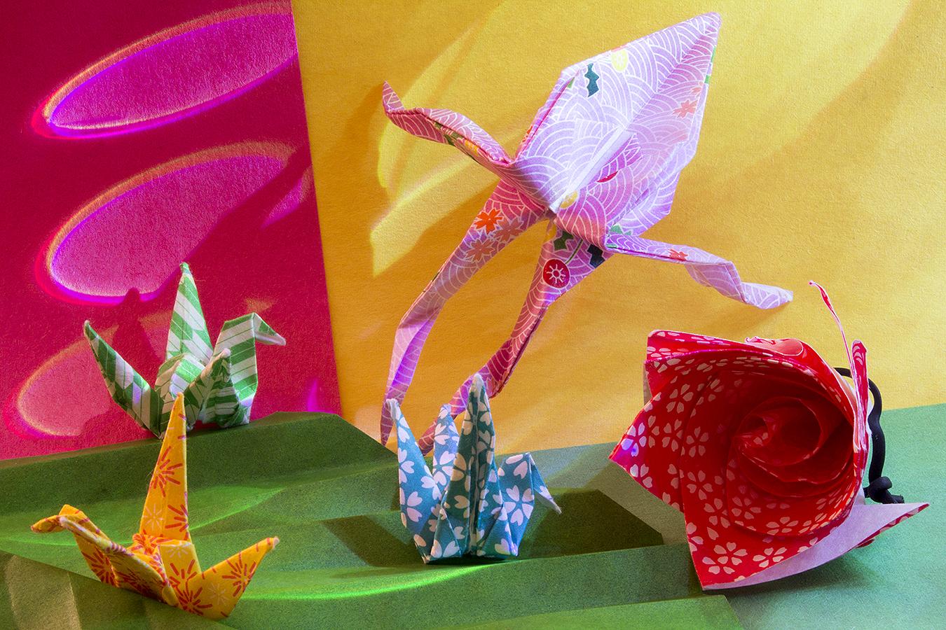20_Colors_Jonathan_Tang_UPenn_Tony_Ward_Studio_Long_Exposure_Low_Light_LED_Optics_Origami_Paper_Frog_Crane_Rose