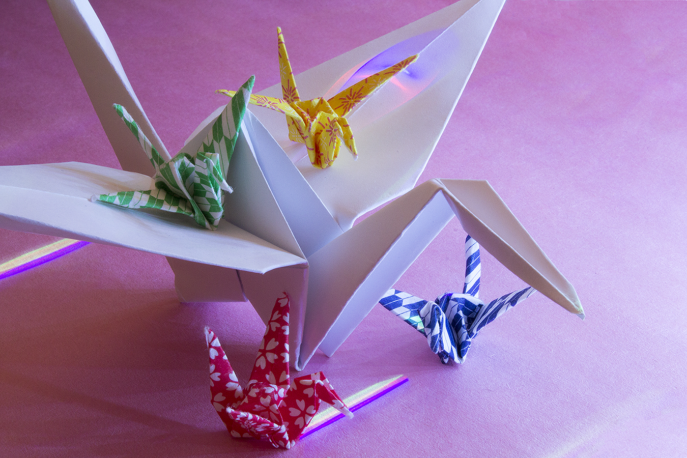 21_Birds_Jonathan_Tang_UPenn_Tony_Ward_Studio_Long_Exposure_Low_Light_LED_Optics_Origami_Paper_Cranes_Pink