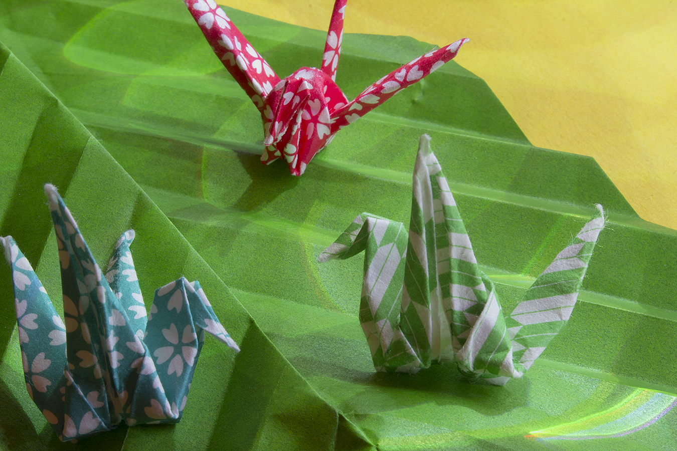 24_Birds_On_A_Leaf_Jonathan_Tang_UPenn_Tony_Ward_Studio_Long_Exposure_Low_Light_LED_Optics_Origami_Paper