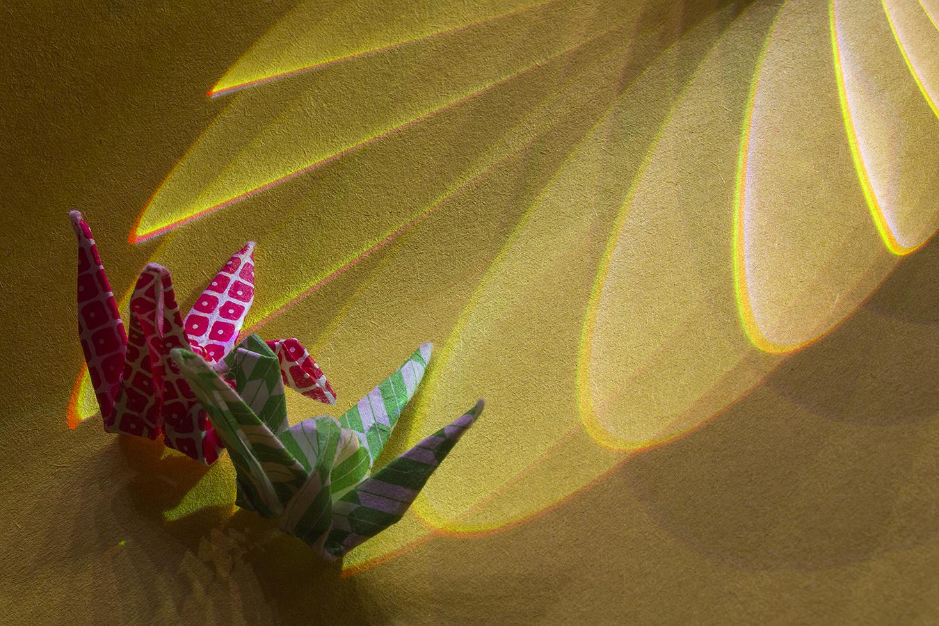 9_Gold_Jonathan_Tang_UPenn_Tony_Ward_Studio_Long_Exposure_Low_Light_LED_Optics_Origami_Paper_Wing