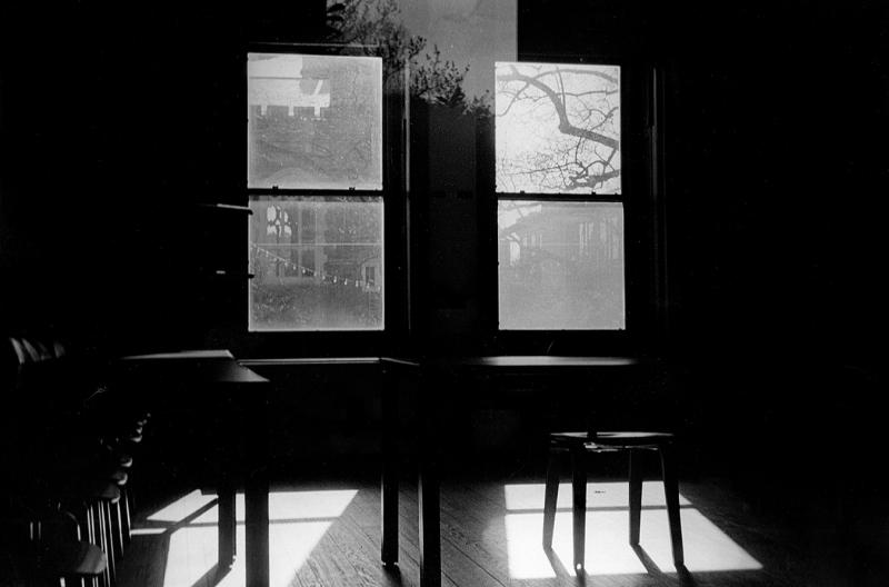 Lipi_Paladugu_light_reflected_series_window