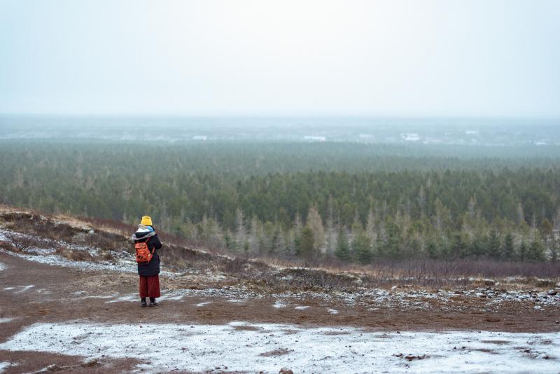Tina-Iceland-Travel-Winter-Forest-Mist-Fog-Mountains