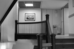 Tyler_Ling_photography_places_science_biology_upenn_descending_basement_staircase_Leidy_lab_black_white_