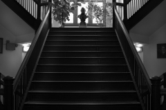 Tyler_Ling_photography_places_science_biology_upenn_grand_staircase_Leidy_lab_ambient_historical_black_white