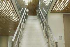 Tyler_Ling_photography_places_science_neuroscience_biological_basis_behavior_upenn_Stephen_Levin_modern_new_stairs_ascending_basement_bright_lighting