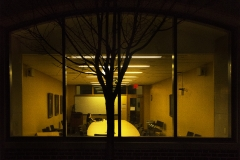 Yash Killa_Philadelphia_Night_Tree_Lights2