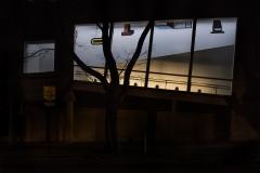 Yash Killa_Philadelphia_Night_Tree_Window_Wall_Blue2