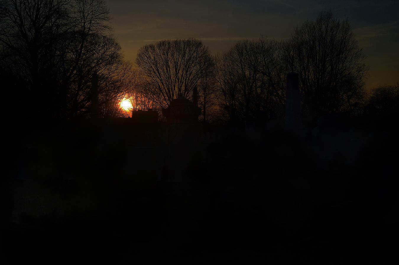 Woodlands_Cemetery_Gravestones_Trees_Sunset_Dusk_Silhouette_Philadelphia_PA