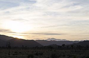 15_JoshuaTree_Landscape_Sunset_Mountains_HP.jpg